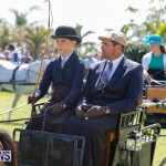 Ag Show at Botanical Gardens Bermuda, April 21 2018-2446