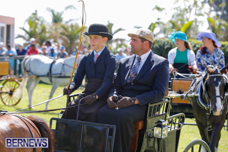 Ag-Show-at-Botanical-Gardens-Bermuda-April-21-2018-2446