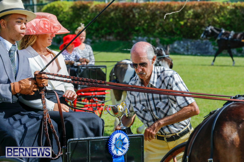 Ag-Show-at-Botanical-Gardens-Bermuda-April-21-2018-2504