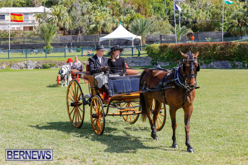 Ag-Show-at-Botanical-Gardens-Bermuda-April-21-2018-2529