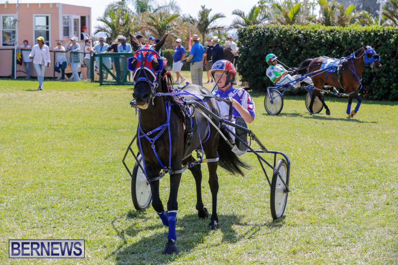 Ag-Show-at-Botanical-Gardens-Bermuda-April-21-2018-2569