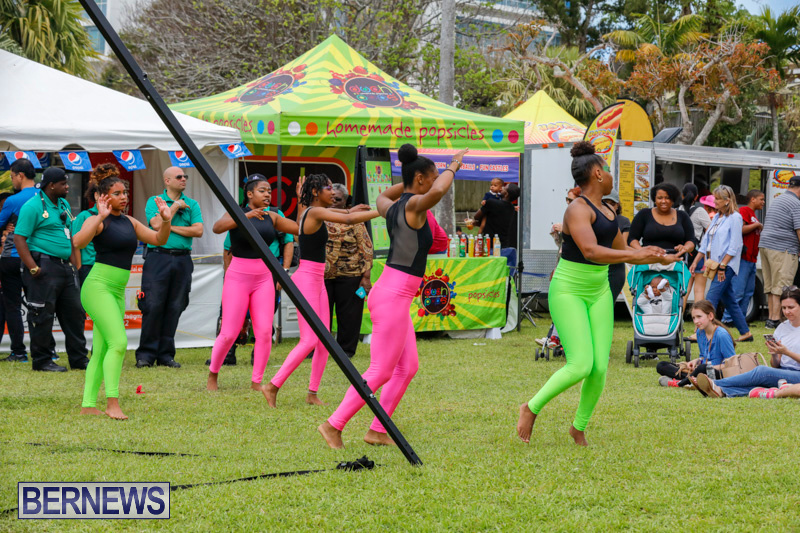 Ag-Show-at-Botanical-Gardens-Bermuda-April-21-2018-2665