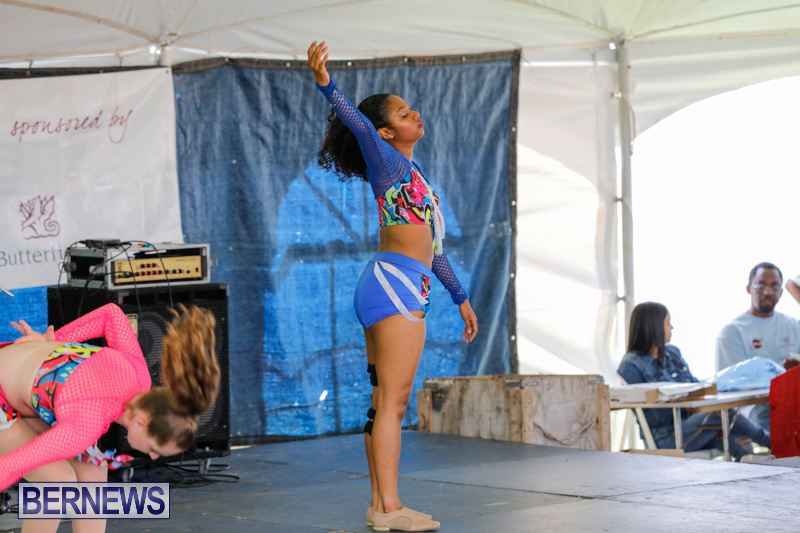 Ag-Show-at-Botanical-Gardens-Bermuda-April-21-2018-2842