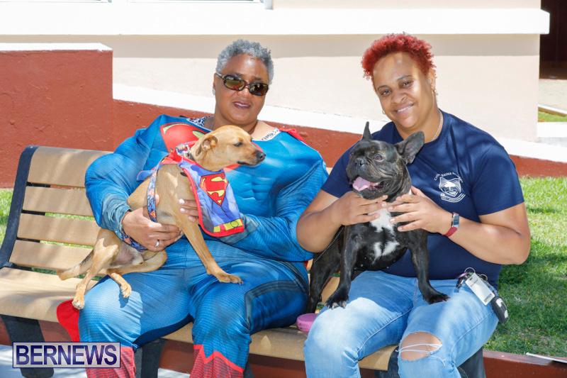 CedarBridge-Academy-Pet-Pageant-Bermuda-April-22-2018-6870
