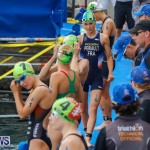 Elite Women MS Amlin ITU World Triathlon Bermuda, April 28 2018-2-95