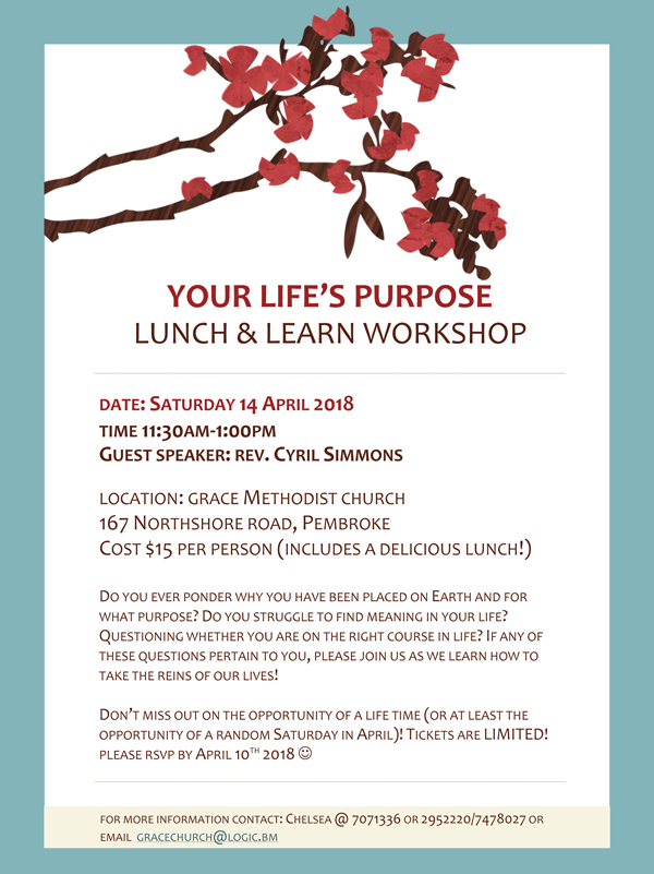 Lunch and Learn workshop Bermuda April 2018