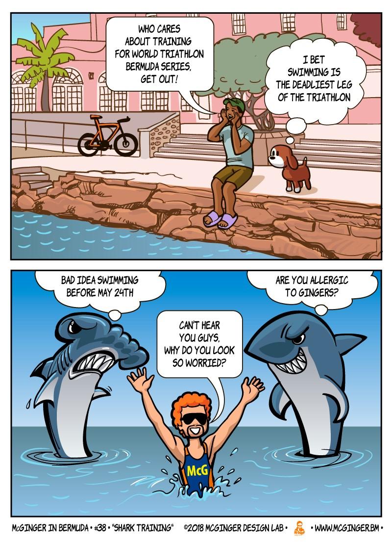 SharkTraining800