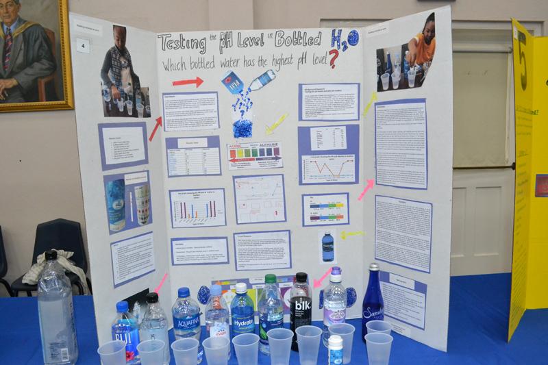 Warwick Academy Science Fair Bermuda April 2018 (11)