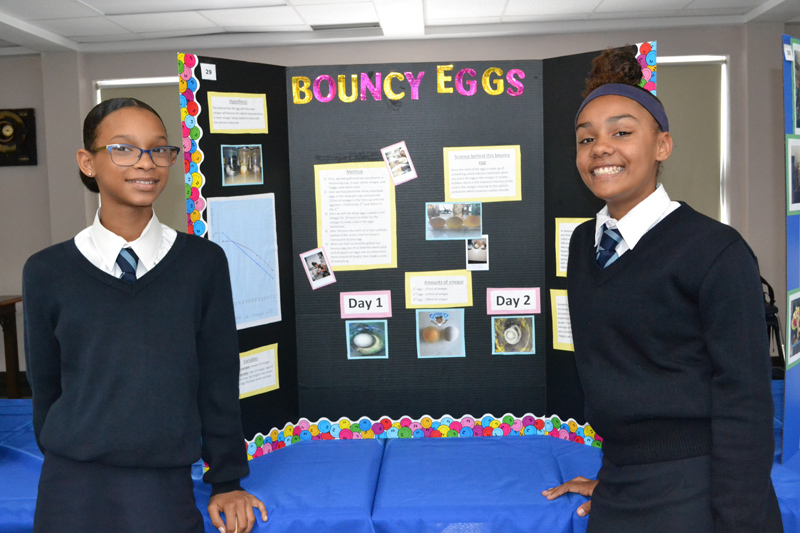 Warwick Academy Science Fair Bermuda April 2018 (7)