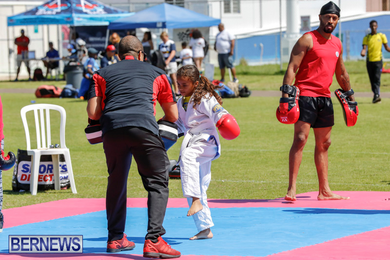 Youth-Sports-Expo-At-National-Sports-Centre-Bermuda-April-15-2018-1415