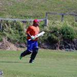 cricket Bermuda April 18 2018 (6)