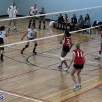 volleyball Bermuda April 25 2018 (12)
