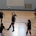 volleyball Bermuda April 25 2018 (7)