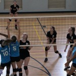 volleyball Bermuda April 25 2018 (9)