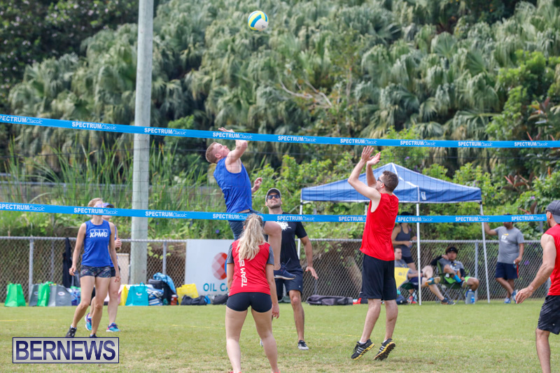 26th-Annual-Corporate-Volleyball-Tournament-Bermuda-May-12-2018-2874