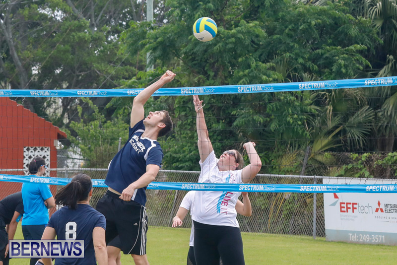 26th-Annual-Corporate-Volleyball-Tournament-Bermuda-May-12-2018-2910