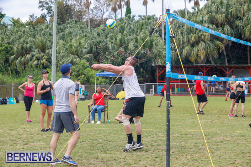 26th-Annual-Corporate-Volleyball-Tournament-Bermuda-May-12-2018-2941