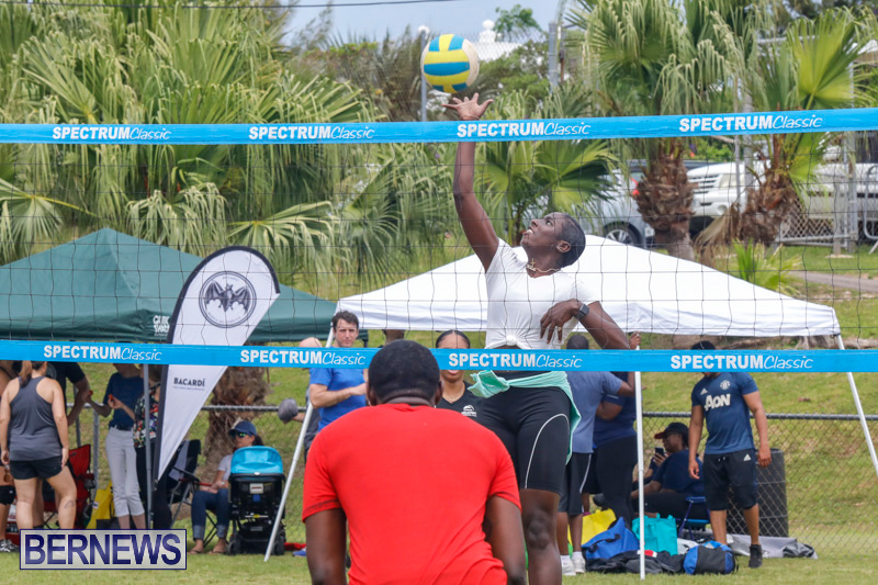 26th-Annual-Corporate-Volleyball-Tournament-Bermuda-May-12-2018-2970