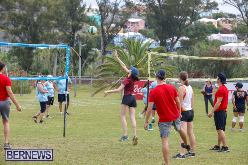 26th-Annual-Corporate-Volleyball-Tournament-Bermuda-May-12-2018-3037