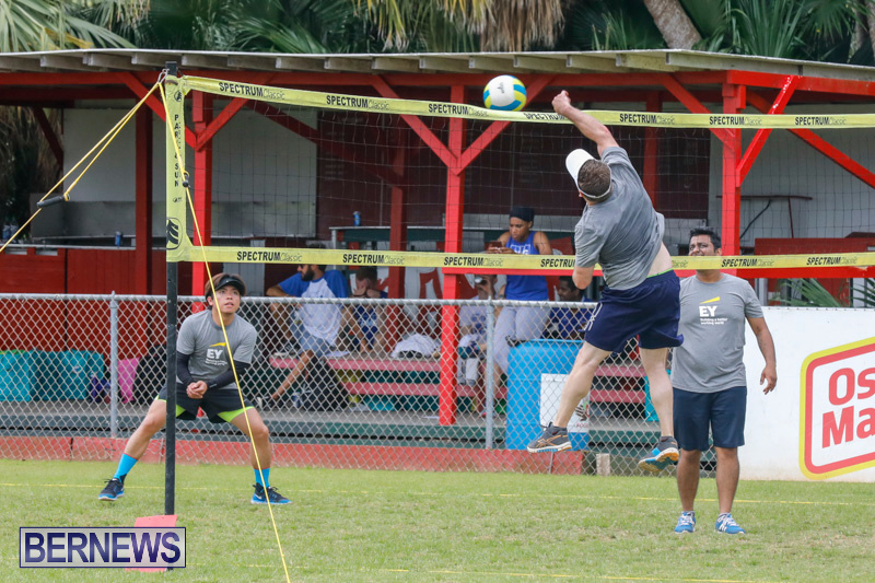 26th-Annual-Corporate-Volleyball-Tournament-Bermuda-May-12-2018-3056