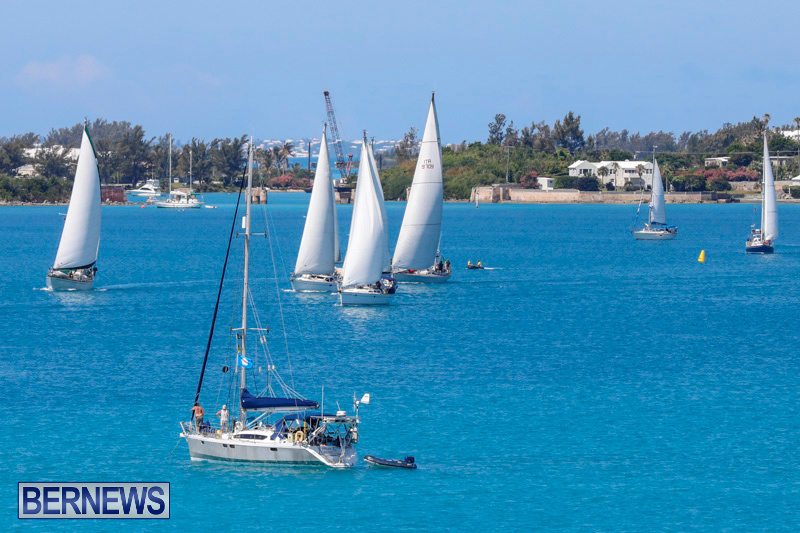 ARC-Europe-Sailing-Rally-Bermuda-May-16-2018-5064