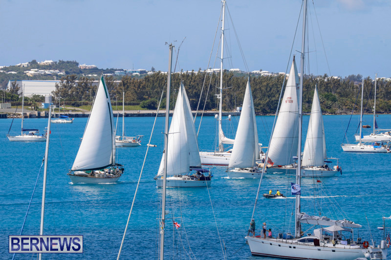 ARC-Europe-Sailing-Rally-Bermuda-May-16-2018-5069