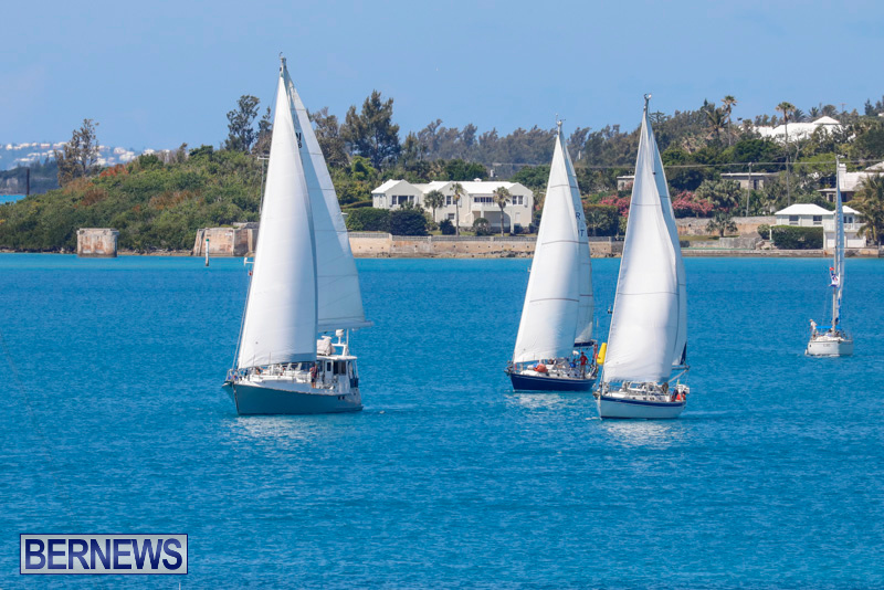 ARC-Europe-Sailing-Rally-Bermuda-May-16-2018-5071