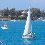 ARC Europe Sailing Rally Bermuda, May 16 2018-5074