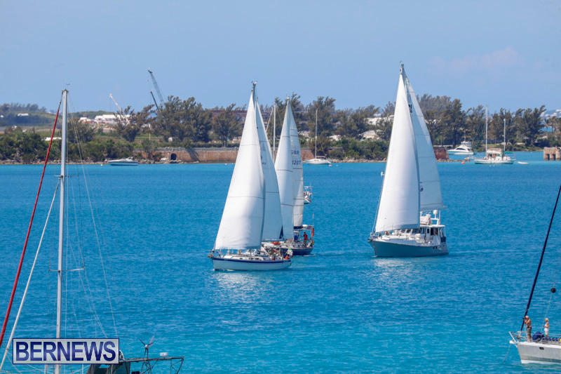 ARC-Europe-Sailing-Rally-Bermuda-May-16-2018-5102