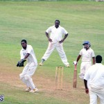 Cricket Bermuda May 16 2018 (5)
