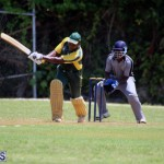 Cricket Bermuda May 30 2018 (1)