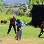 Cricket Bermuda May 30 2018 (11)