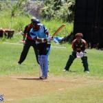 Cricket Bermuda May 30 2018 (14)