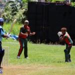 Cricket Bermuda May 30 2018 (16)