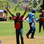 Cricket Bermuda May 30 2018 (17)