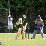 Cricket Bermuda May 30 2018 (2)