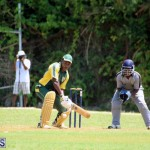 Cricket Bermuda May 30 2018 (5)