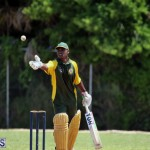 Cricket Bermuda May 30 2018 (7)