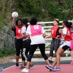 Netball Bermuda May 30 2018 (13)
