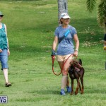 Paws To The Park at the Arboretum Bermuda, May 12 2018-3233