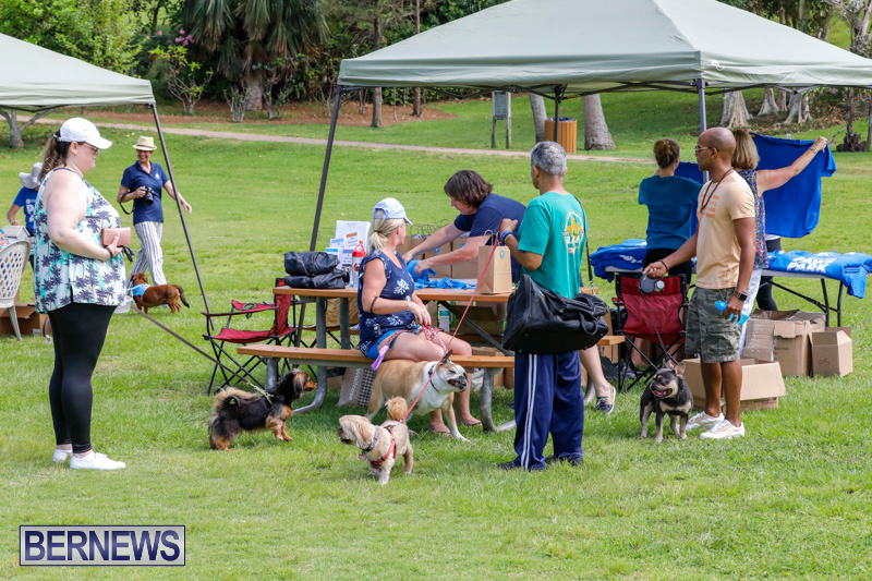 Paws-To-The-Park-at-the-Arboretum-Bermuda-May-12-2018-3239