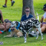 Paws To The Park at the Arboretum Bermuda, May 12 2018-3248