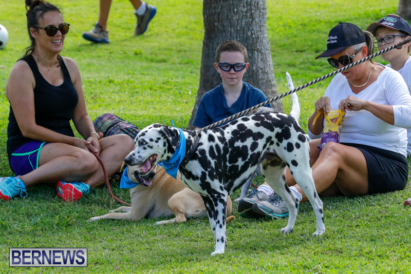 Paws-To-The-Park-at-the-Arboretum-Bermuda-May-12-2018-3248