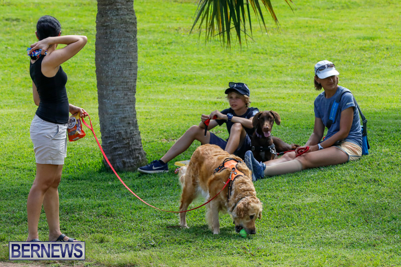 Paws-To-The-Park-at-the-Arboretum-Bermuda-May-12-2018-3256