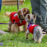 Paws To The Park at the Arboretum Bermuda, May 12 2018-3296