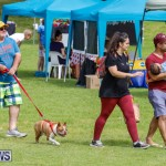 Paws To The Park at the Arboretum Bermuda, May 12 2018-3302