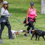 Paws To The Park at the Arboretum Bermuda, May 12 2018-3305
