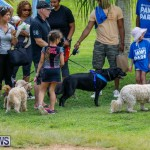 Paws To The Park at the Arboretum Bermuda, May 12 2018-3334
