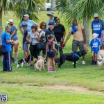 Paws To The Park at the Arboretum Bermuda, May 12 2018-3335