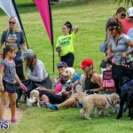 Paws To The Park at the Arboretum Bermuda, May 12 2018-3348